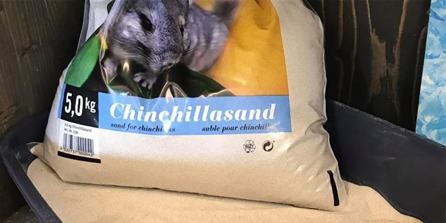 Chinchilla Sand bei Zoo Burkart